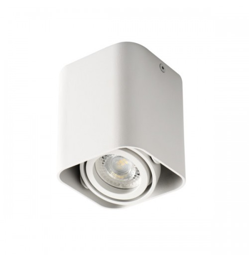 Akcentinis šviestuvas Kanlux Toleo DTL-50-W 1xGU10