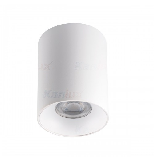 Akcentinis šviestuvas Kanlux Riti W/W 1xGU10