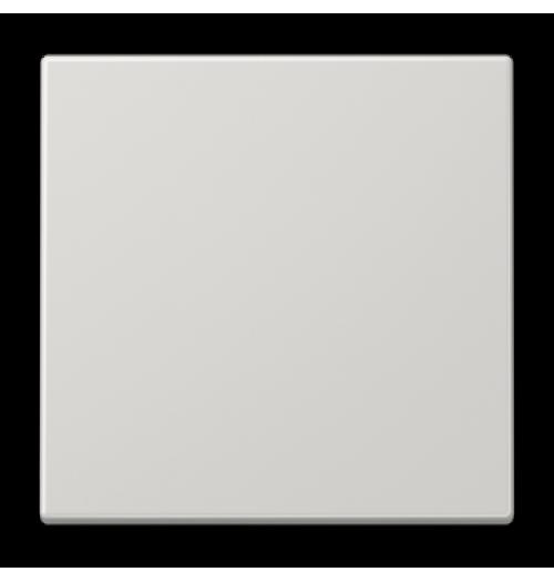 Apdaila 1 klavišo šviesiai pilkos sp. LS990LG