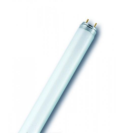 Liuminescencinė lempa T8 18W 840 Radium Spectralux Plus