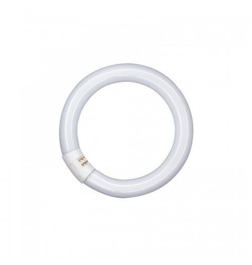 Liuminescencinė lempa OSRAM T9 32W 840
